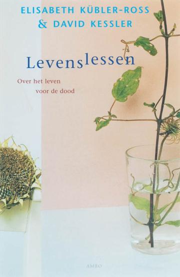 Levenslessen - David Kessler