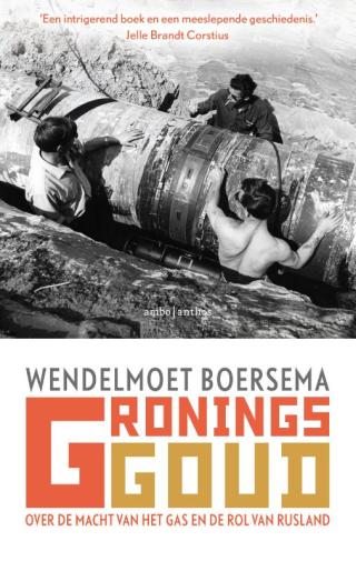 Gronings goud - Wendelmoet Boersema