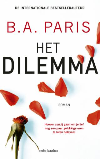 Het dilemma - Ireen Niessen