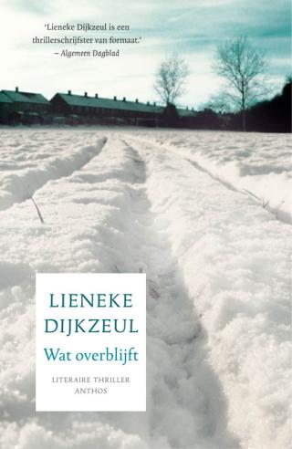 Wat overblijft - Lieneke Dijkzeul